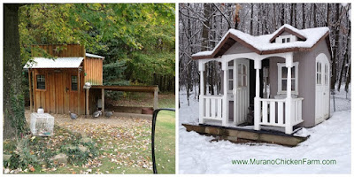 Choosing a chicken coop for your new flock.