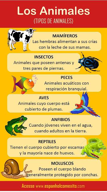 animais em espanhol