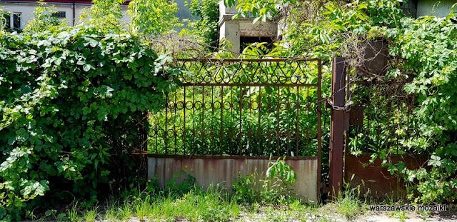 Warszawa Warsaw Białołęka Annopol Żerań Aleksandrówek ulice Warszawy kamienica zniszczone opuszczone brama