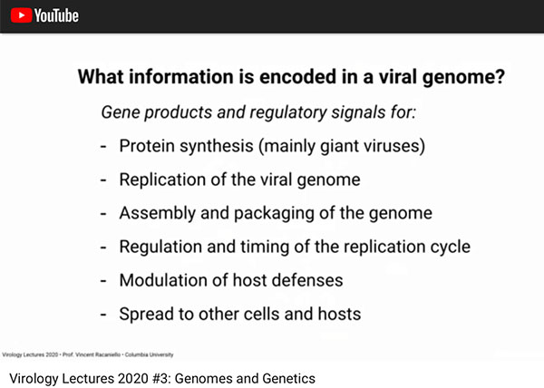 What information is stored n the viral genome?  (Source: Vincent Racaniello, Columbia, U.)
