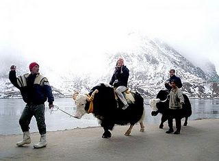 TAKE A YAK RIDE AT THE TSOGMO LAKE AND VISIT THE NATHULA PASS