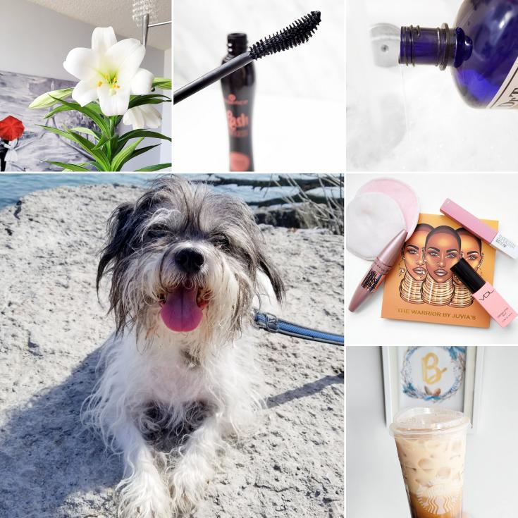 bblogger, bbloggers, bbloggerca, bbloggersca, canadian beauty bloggers, lifestyle blog, instamonth, yves rocher, fenty beauty, starbucks, juvia's place, maybelline, revlon, mitch albom, harry potter mugglenet books, instagram roundup