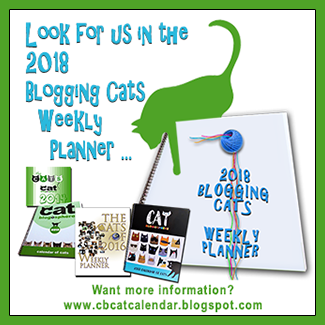 2018 Blogging Cats Calendar