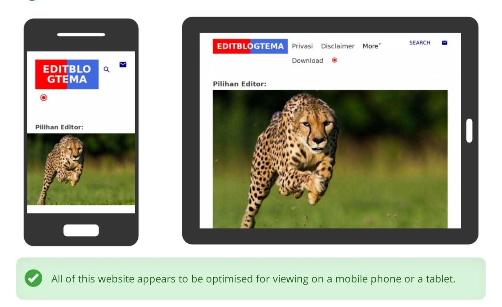 template mobile editblogtema