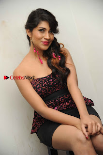 Kannada Actress Iti Acharya Stills in Strapless Dress at Dhwani Movie Press Meet  0010.jpg