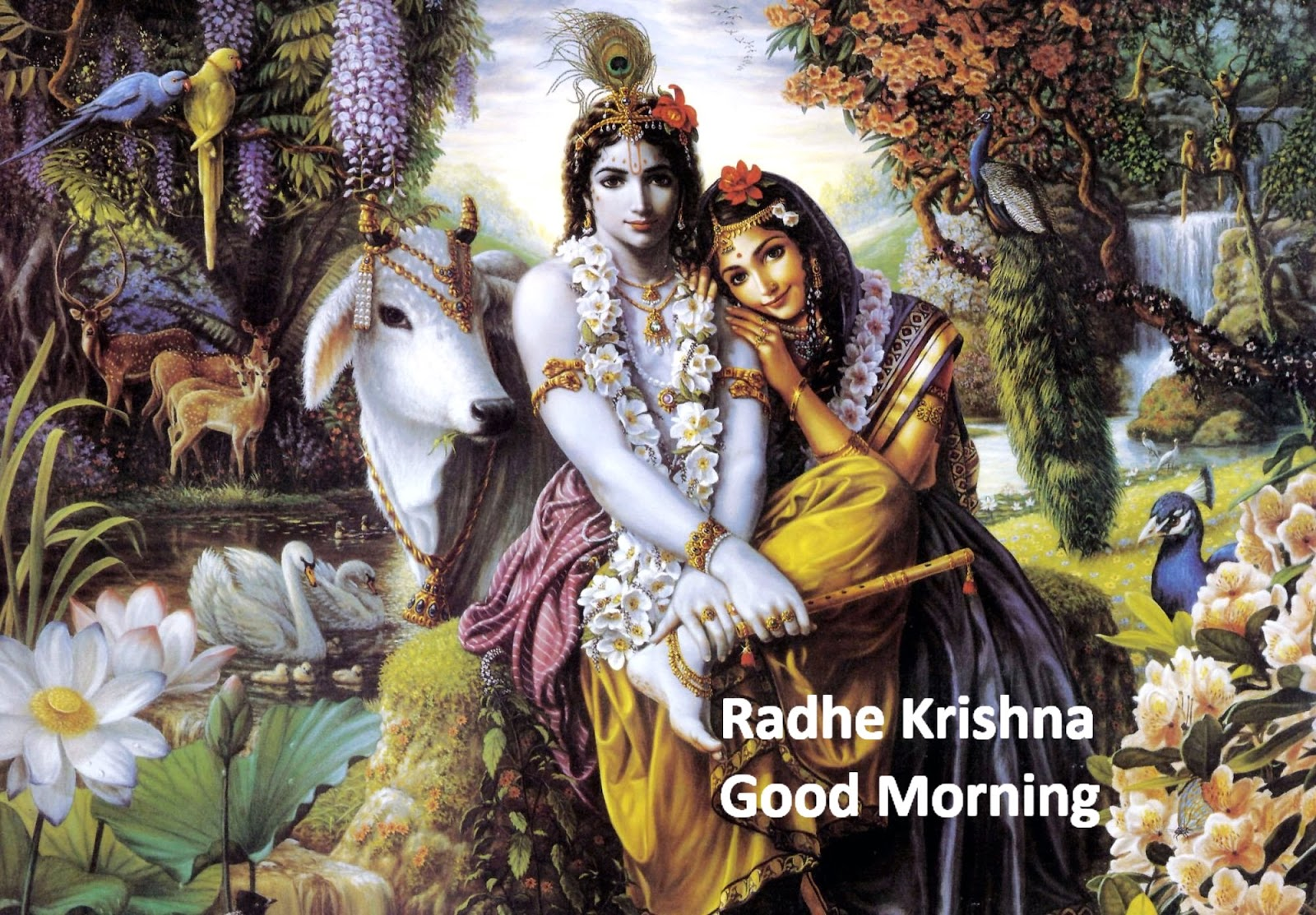 Good Morning Krishna Images