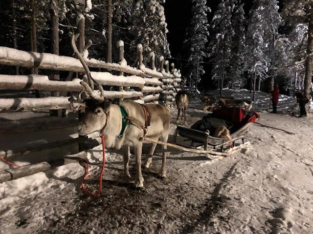 Talviloma Saariselällä - monipuolinen kohde lasten kanssa