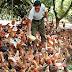 Việt Nam nhập siêu 'đặc sản'... cổ, cánh, chân gà