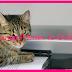 Change Printer to Online