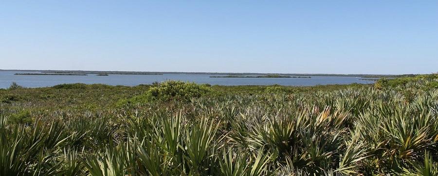 Mosquito Lagoon desde el parque nacional de Canaveral National Seashore