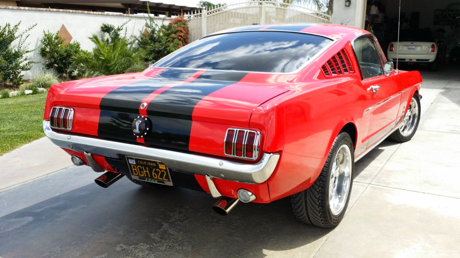 1966 ford mustang fastback shelby strip for sale american muscle cars. Black Bedroom Furniture Sets. Home Design Ideas