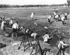 As fazendas coletivas, campos comunitários ou assentamentos não se distinguiam dos campos de concentração