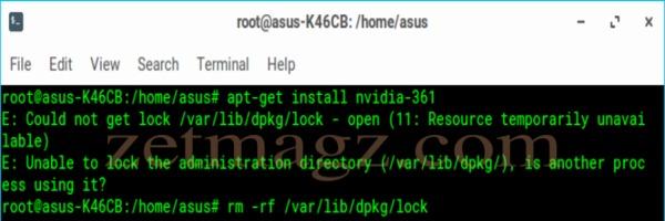 Install Driver Nvidia Asus K46CB di Linux Zorin