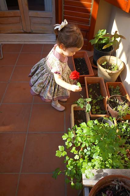 Lolittos moda infantil España