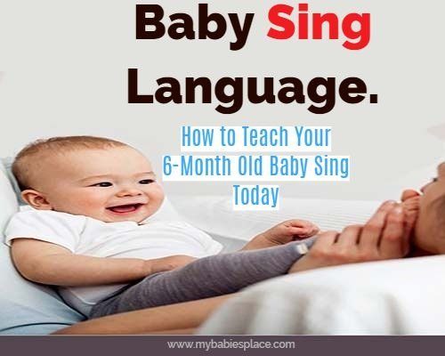 How To Teach Your 6 Month Old Baby Sign Language Today.