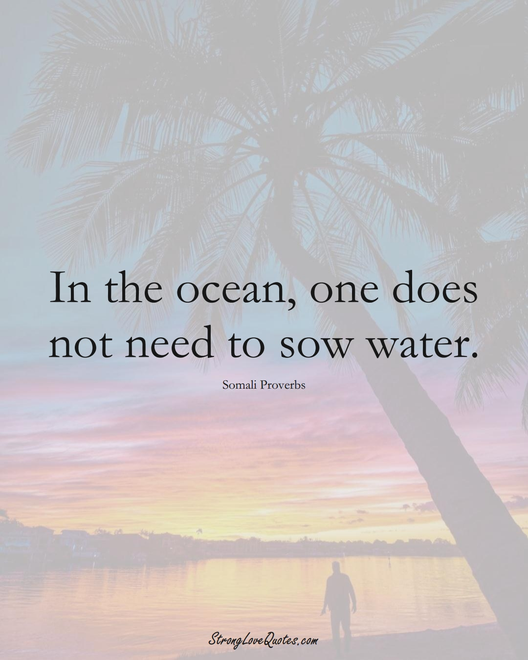 In the ocean, one does not need to sow water. (Somali Sayings);  #AfricanSayings