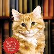 Dewey: The Small-Town Library Cat Who Touched the World by Vicki Myron