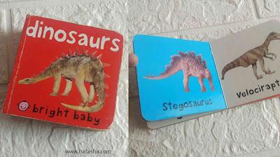 buku bright baby dinosaurs
