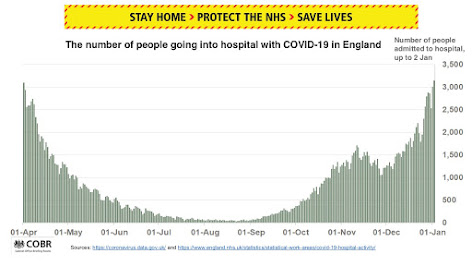 COVID daily hospitalisations from yesterdays briefing