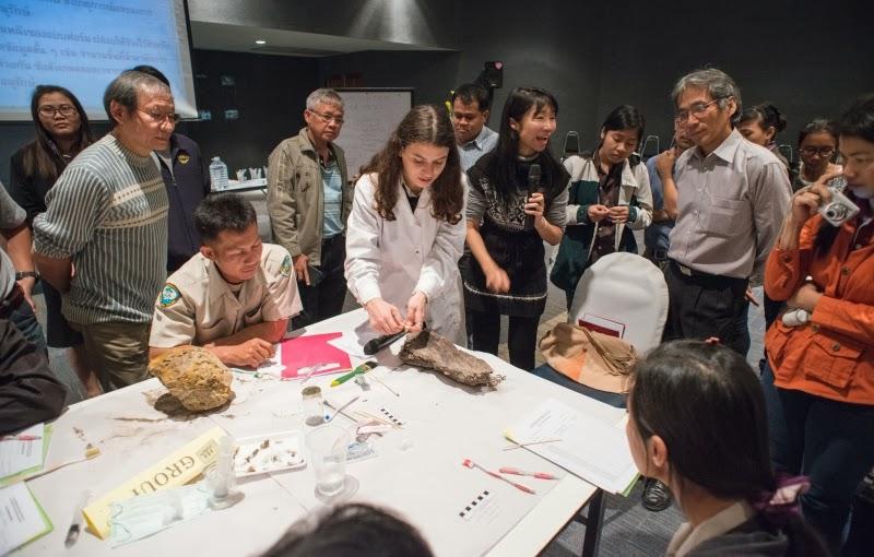 Μια επιτυχής διεθνής συνεργασία για το ΤΕΙ Ιονίων Νήσων
