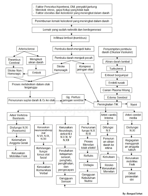 lengkap sangat dibutuhkan sekali patofisiologi serta tentunya juga pathway stroke yang sesu Pathway Stroke Doc serta Patofisiologi