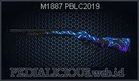 M1887 PBLC2019