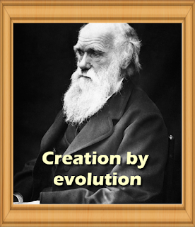 Creation by evolution