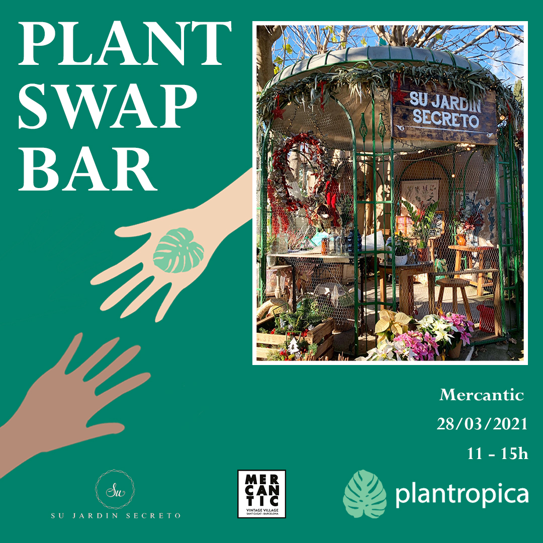 Intercambio de Plantas y Esquejes organizado por Plantropica y Su Jardín Secreto en Mercantic