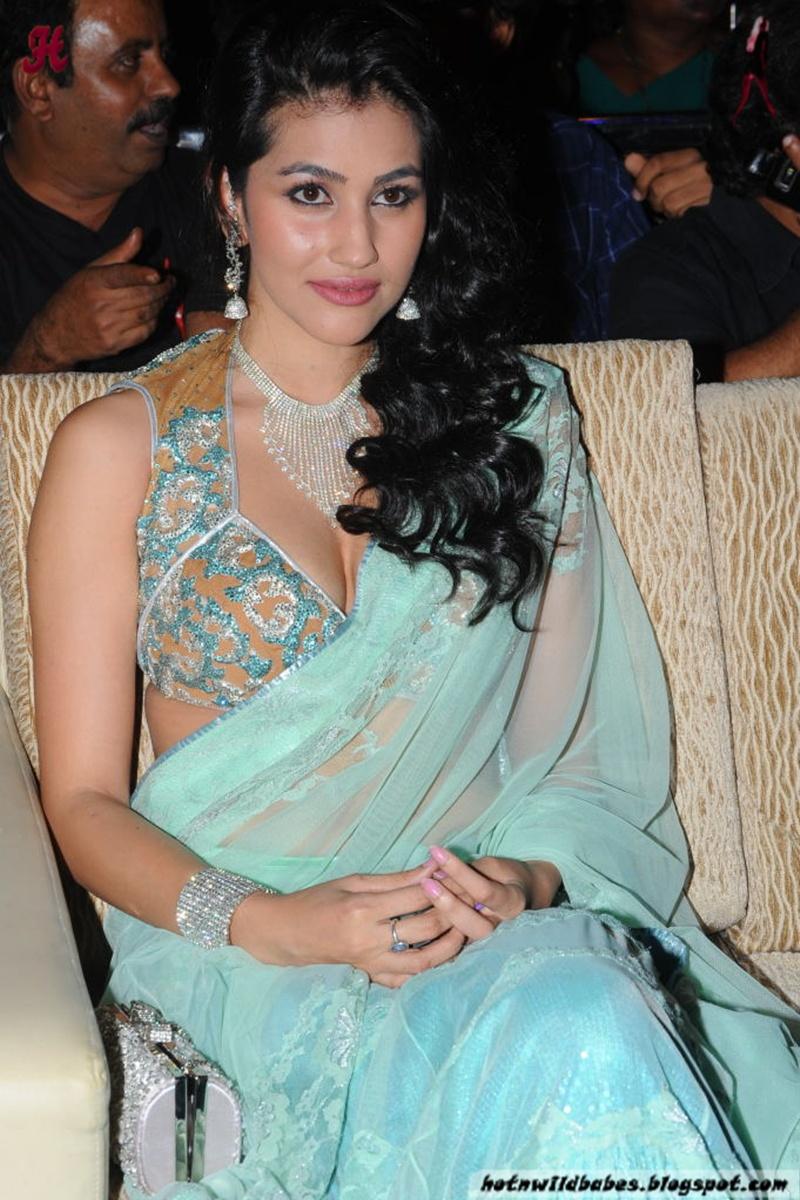 Anjali Lavania Boobs Exposed In Sexy Silk Saree  Nude -4762