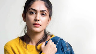 Mrunal Thakur Filmography, Roles, Verdict (Hit / Flop), Box Office Collection, And Others