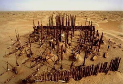 Wooden phalluses found at lost burial site in Xinjiang desert