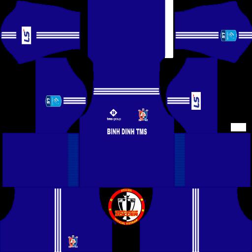 Kit Bình Định 2019 DLS FTS