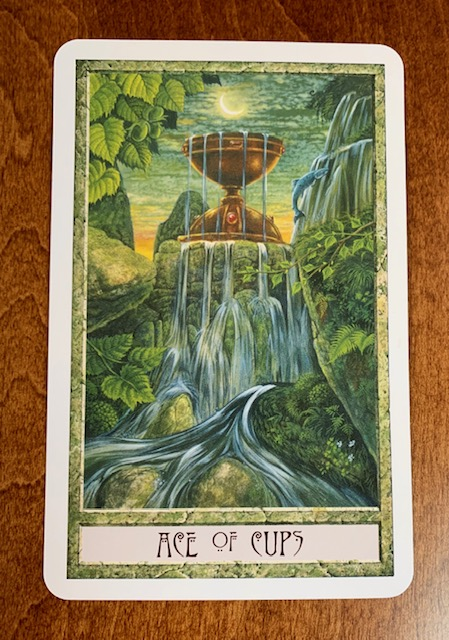 Daily-Tarot-Card-Mother-Tarot-Ace-of-Cups-Druidcraft-Tarot