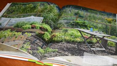 Manual para cultivar en espacios pequeños. Un libro y un sorteo