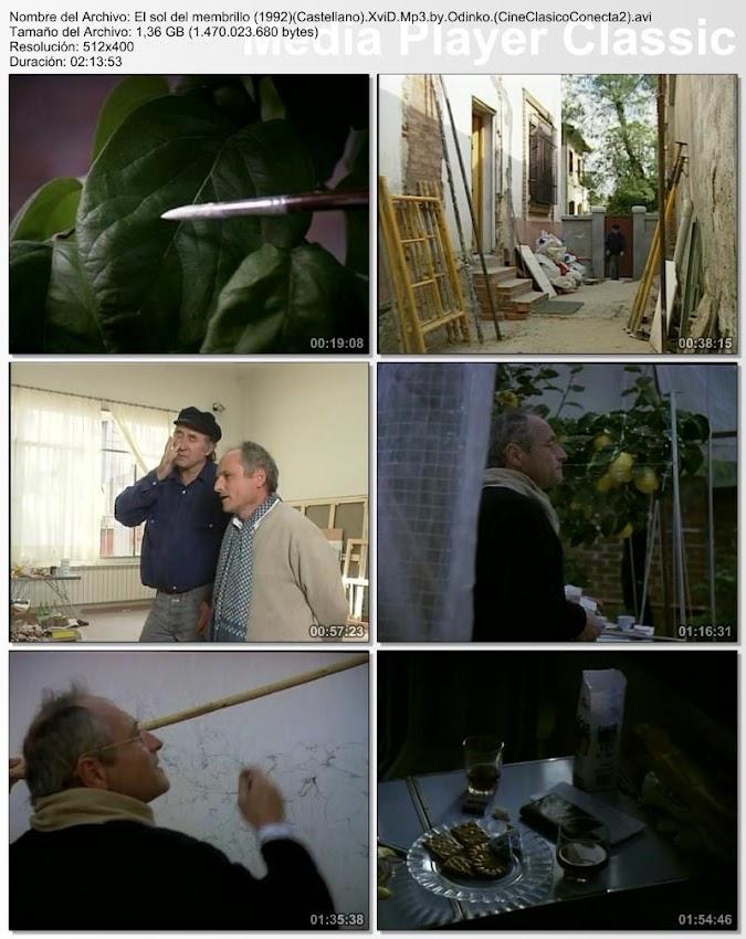 El Sol del Membrillo (1992) | Documental