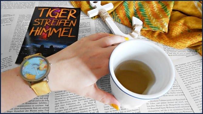 Rezension Tigerstreifenhimmel Ronja Delahaye