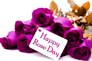 😄Happy 🌹Rose Day 📩Messages and 📜Saying in Hindi & English 2020