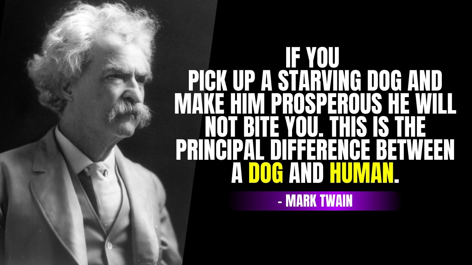 Mark Twain Quotes Dog & Human, Mark Twain Quotes on Life