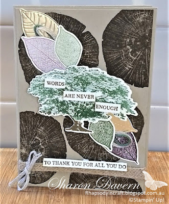 Rooted in Nature, Masculine cards, Male Cards, Thank you Cards, Thank you, Stampin' Up!, Rhapsodyincraft