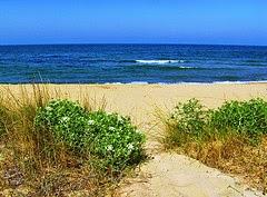 Séquia la Bova, platja de Tavernes de la Valldigna per jacové a Flickr