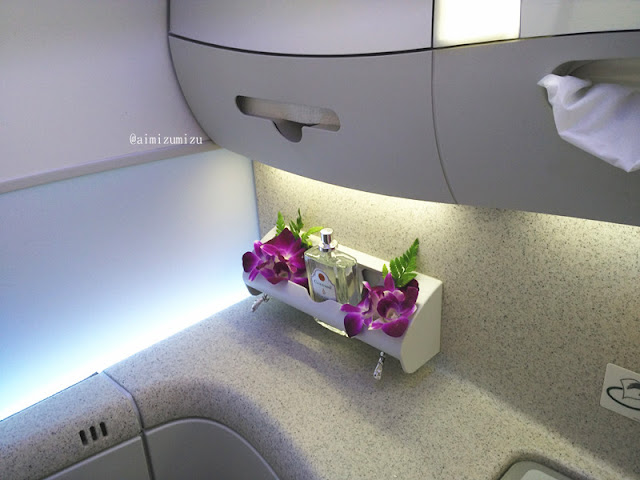 Thai airways toilet