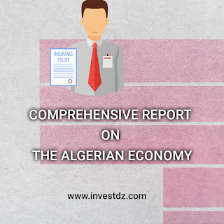 Comprehensive report on the Algerian economy