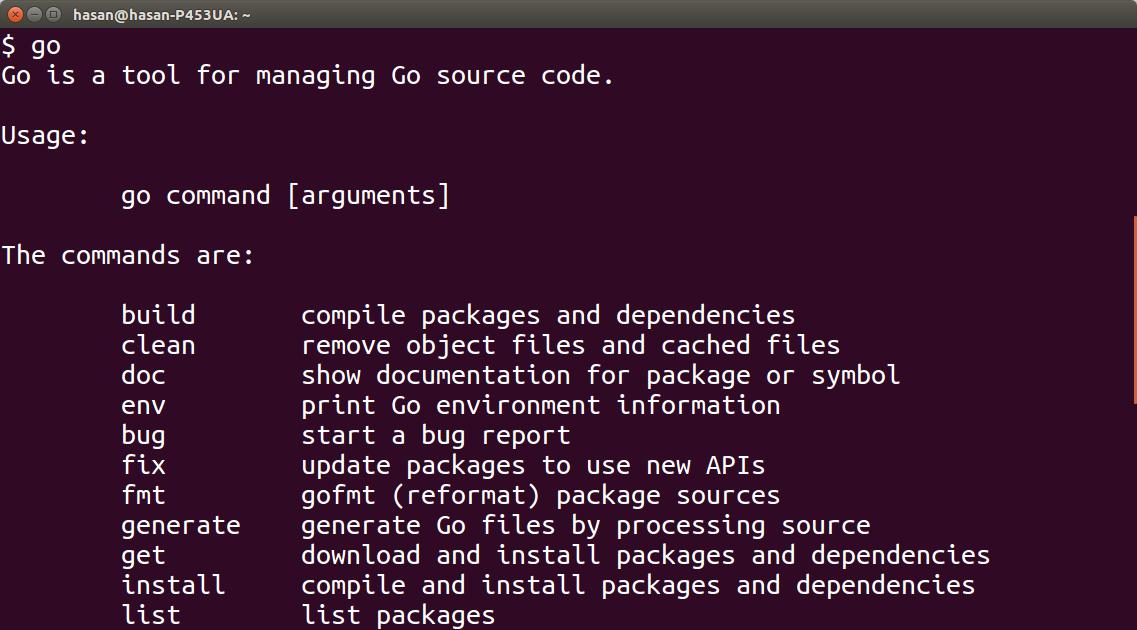 Go programming language running in ubuntu terminal