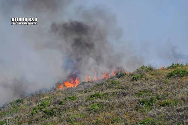 Πυρκαγιά Νοέμβρη μήνα στη Νέα Τίρυνθα Ναυπλίου
