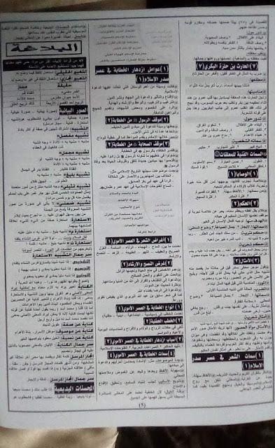 تجميع لكل امتحانات اللغة العربية والتربية الإسلامية للصف الثانى الثانوى 2020 3