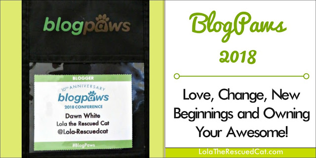 BlogPaws|social media conference