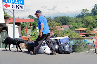 Man walking by dog getting into garbage bag in Puriscal.