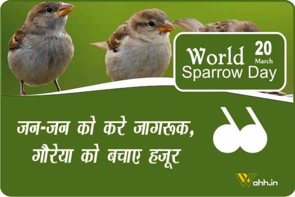 Best  World Sparrow Day Quotes