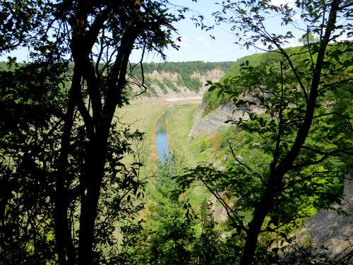 Genesee River Gorge