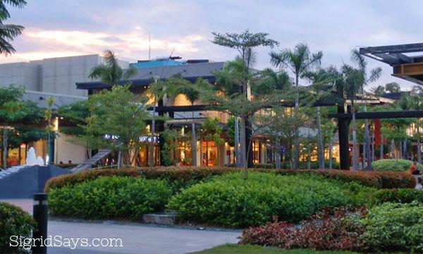 Ayala landscaping